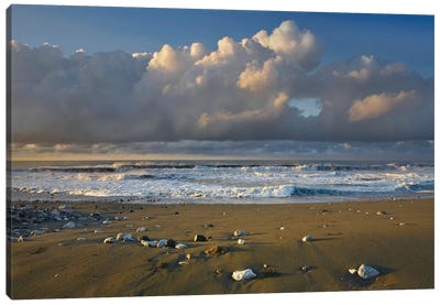 Beach And Waves, Corcovado National Park, Costa Rica Canvas Art Print