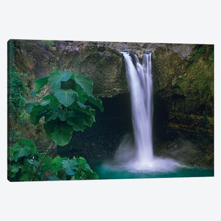 Rainbow Falls Cascading Into Pool, Big Island, Hawaii Canvas Print #TFI855} by Tim Fitzharris Canvas Art