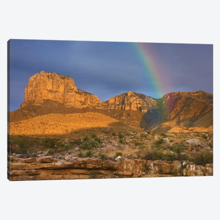 Rainbow Near El Capitan, Guadalupe Mountains National Park, Texas Canvas Print #TFI856} by Tim Fitzharris Canvas Wall Art