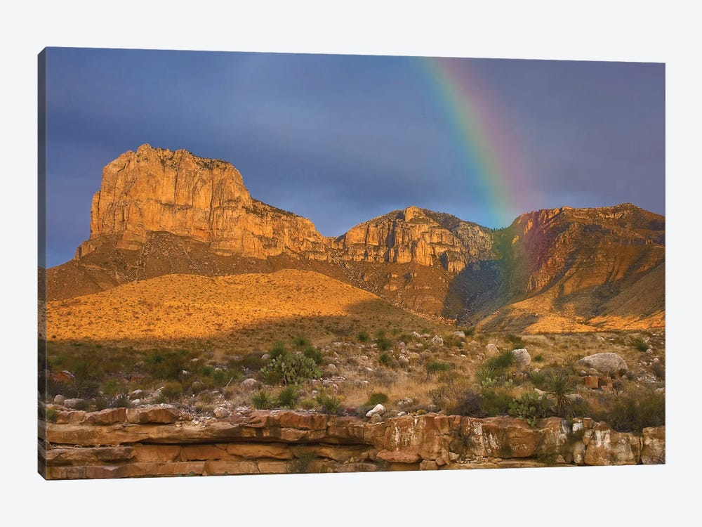 Rainbow Near El Capitan, Guadalupe Mountains National Park, Texas by Tim Fitzharris 1-piece Canvas Wall Art