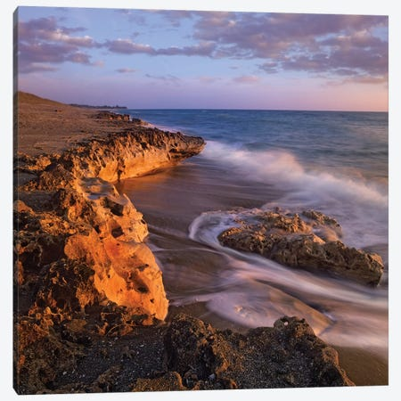 Beach At Dusk, Blowing Rocks Preserve, Florida Canvas Print #TFI85} by Tim Fitzharris Canvas Art Print