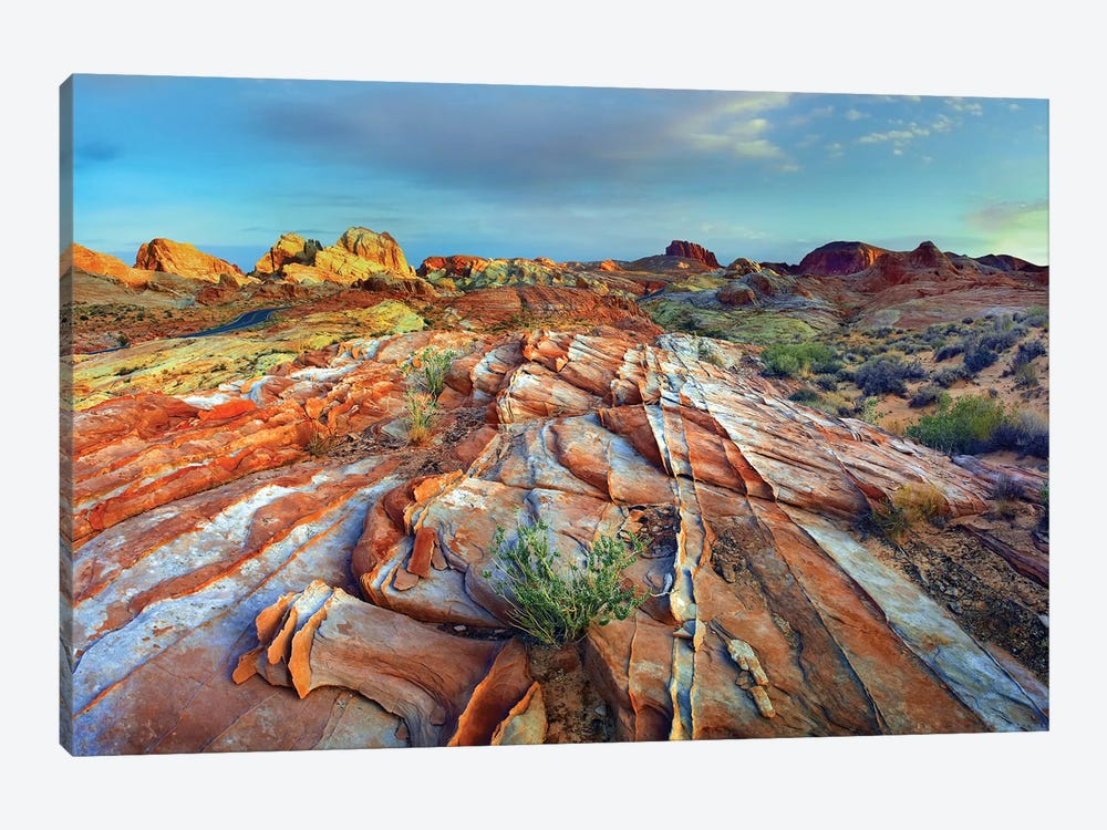 Rainbow Vista, Valley Of Fire State Park, Nevada by Tim Fitzharris 1-piece Canvas Print
