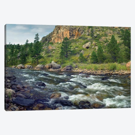 Rapids With Cliffs Above Cache La Poudre River, Colorado Canvas Print #TFI861} by Tim Fitzharris Canvas Art