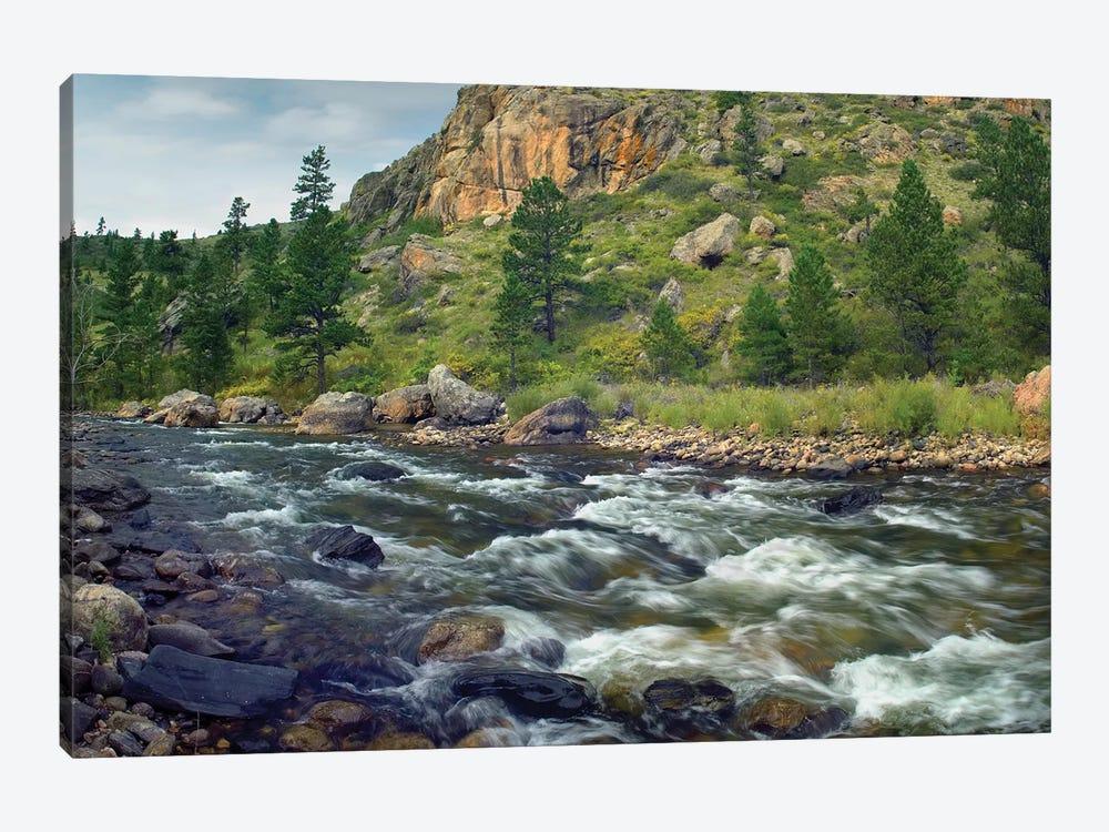 Rapids With Cliffs Above Cache La Poudre River, Colorado by Tim Fitzharris 1-piece Canvas Artwork