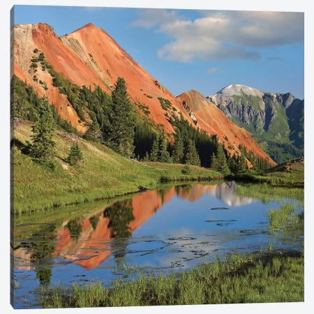Red Mountain Gets Its Color From Iron Ore In The Rock, Gray Copper Gulch, Colorado Canvas Print #TFI867} by Tim Fitzharris Canvas Art Print