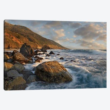 Beach At Kirk Creek Beach, Big Sur, California 3-Piece Canvas #TFI86} by Tim Fitzharris Canvas Print