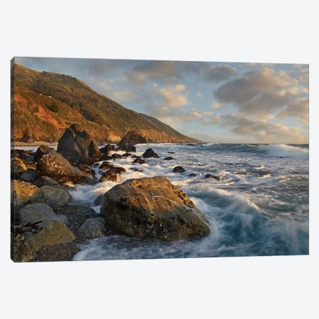 Beach At Kirk Creek Beach, Big Sur, California Canvas Print #TFI86} by Tim Fitzharris Canvas Print