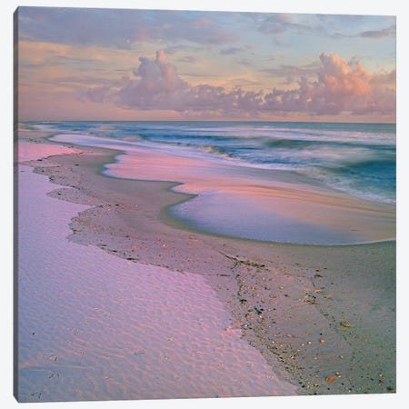 Beach At Sunrise, Gulf Islands National Seashore, Florida Canvas Print #TFI87} by Tim Fitzharris Canvas Art Print