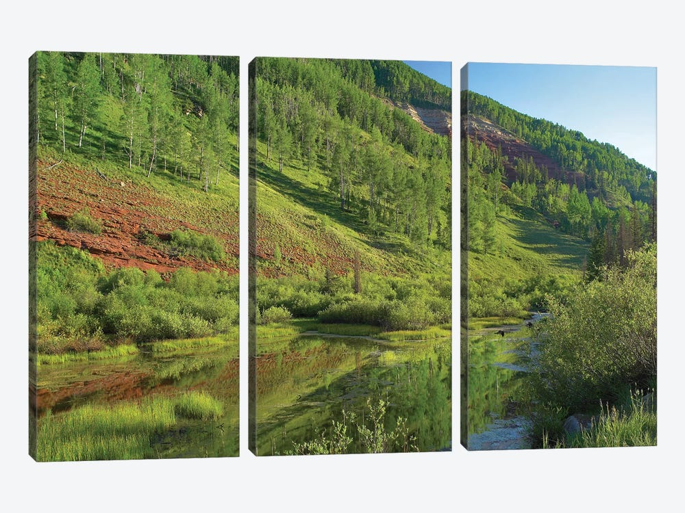 Rico Mountains And Dolores River Backwaters, Colorado by Tim Fitzharris 3-piece Canvas Art Print