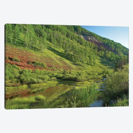 Rico Mountains And Dolores River Backwaters, Colorado Canvas Print #TFI884} by Tim Fitzharris Canvas Print