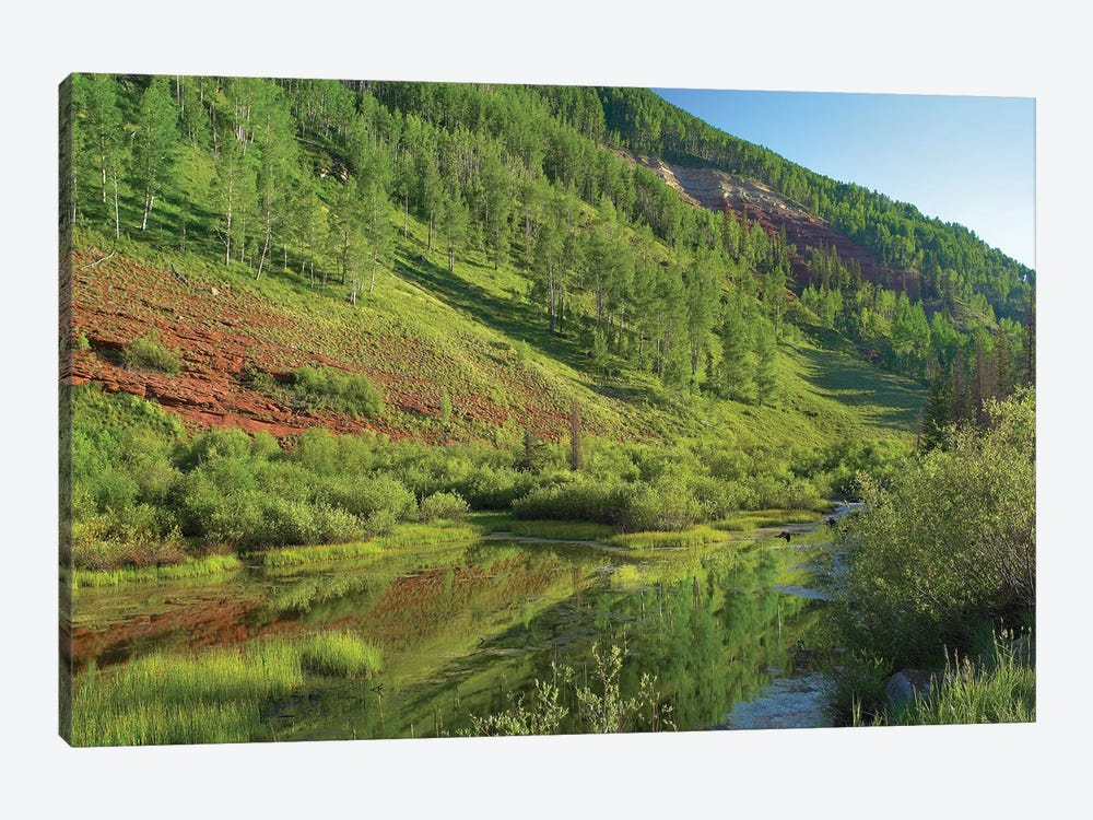 Rico Mountains And Dolores River Backwaters, Colorado by Tim Fitzharris 1-piece Canvas Art Print