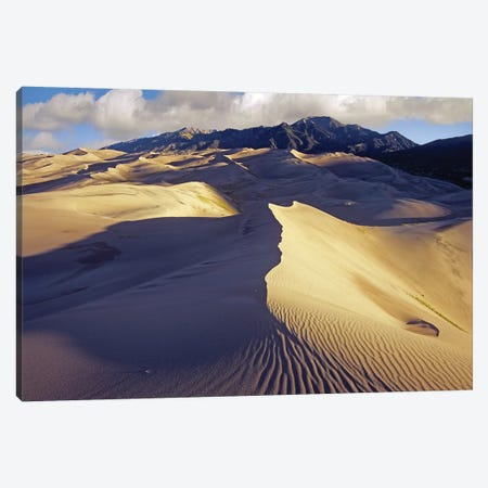 Rippled Sand Dunes With Sangre De Cristo Mountains In The Background, Great Sand Dunes National Park And Preserve, Colorado Canvas Print #TFI887} by Tim Fitzharris Canvas Print