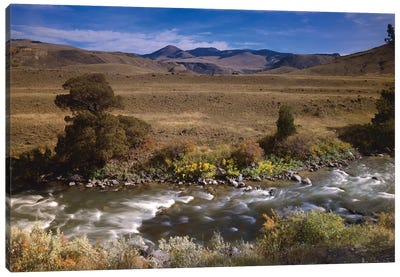River Flowing Though Meadow, Yellowstone National Park, Wyoming Canvas Art Print