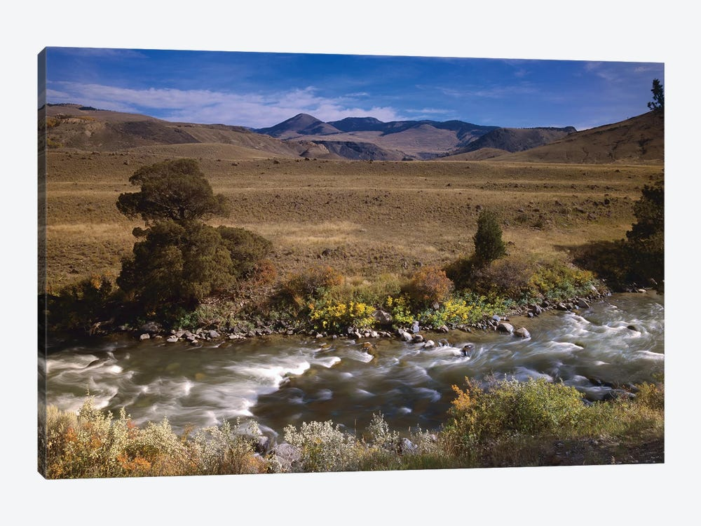River Flowing Though Meadow, Yellowstone National Park, Wyoming by Tim Fitzharris 1-piece Canvas Print