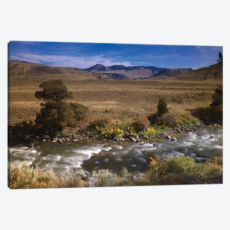 River Flowing Though Meadow, Yellowstone National Park, Wyoming Canvas Print #TFI888} by Tim Fitzharris Canvas Wall Art