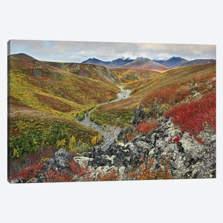 River Flowing Through Tundra, Ogilvie Mountains, Tombstone Territorial Park, Yukon, Canada Canvas Print #TFI889} by Tim Fitzharris Canvas Wall Art