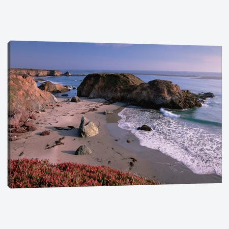 Beach Near San Simeon Creek With Ice Plant In The Foreground, Big Sur, California Canvas Print #TFI88} by Tim Fitzharris Canvas Art