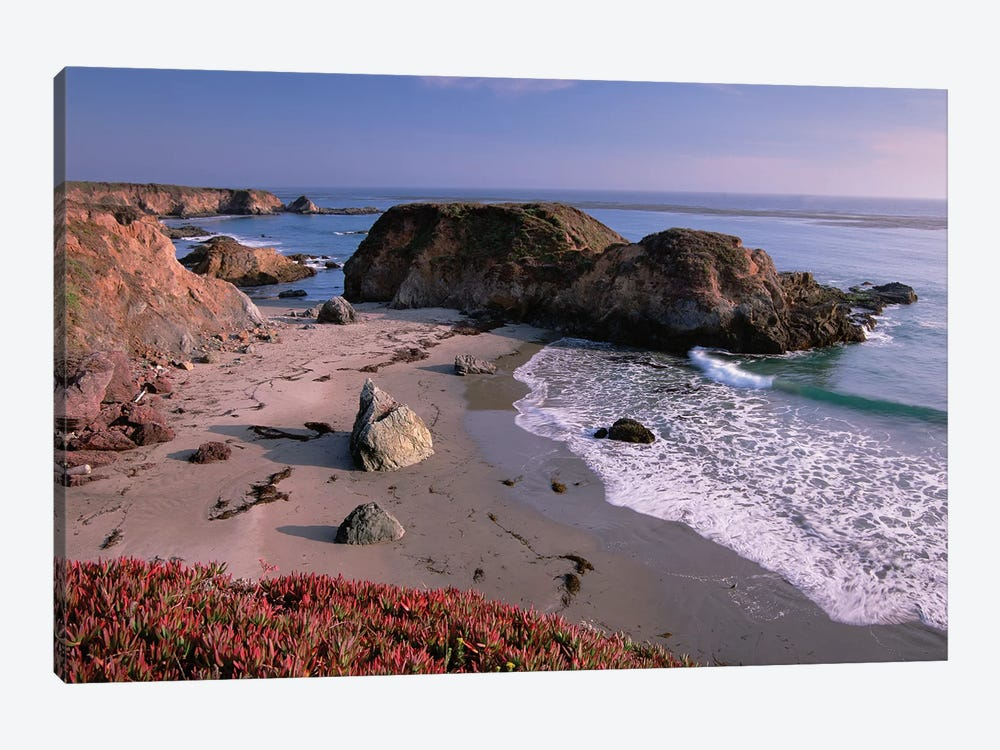Beach Near San Simeon Creek With Ice Plant In The Foreground, Big Sur, California by Tim Fitzharris 1-piece Canvas Artwork
