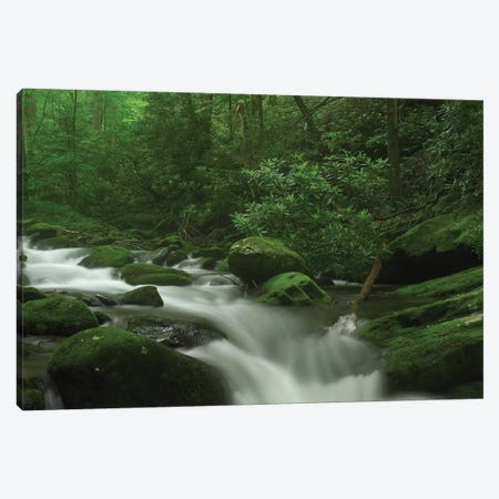 Roaring Fork River Flowing Through The Great Smoky Mountains National Park, Tennessee Canvas Print #TFI892} by Tim Fitzharris Canvas Print