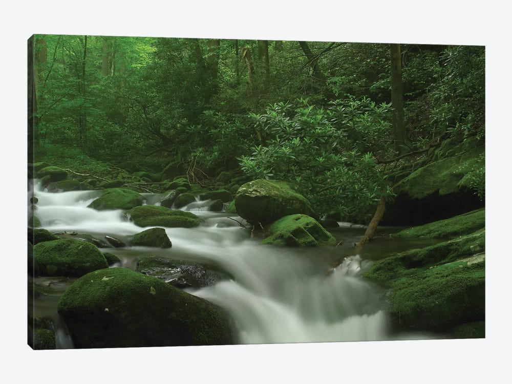 Roaring Fork River Flowing Through The Great Smoky Mountains National Park, Tennessee by Tim Fitzharris 1-piece Canvas Art