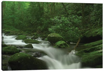 Roaring Fork River Flowing Through The Great Smoky Mountains National Park, Tennessee Canvas Art Print