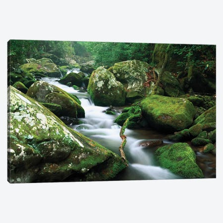 Roaring Fork River, Great Smoky Mountains National Park, Tennessee Canvas Print #TFI893} by Tim Fitzharris Canvas Art Print
