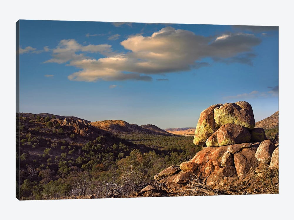 Rockpile, Davis Mountains, Chihuahuan Desert, Texas I 1-piece Canvas Art Print