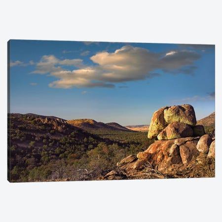 Rockpile, Davis Mountains, Chihuahuan Desert, Texas I Canvas Print #TFI899} by Tim Fitzharris Canvas Art Print