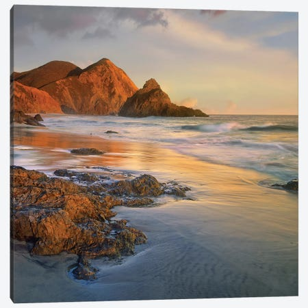 Bean Hollow Beach, Big Sur, California Canvas Print #TFI89} by Tim Fitzharris Canvas Art
