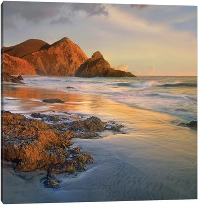 Bean Hollow Beach, Big Sur, California Canvas Art Print
