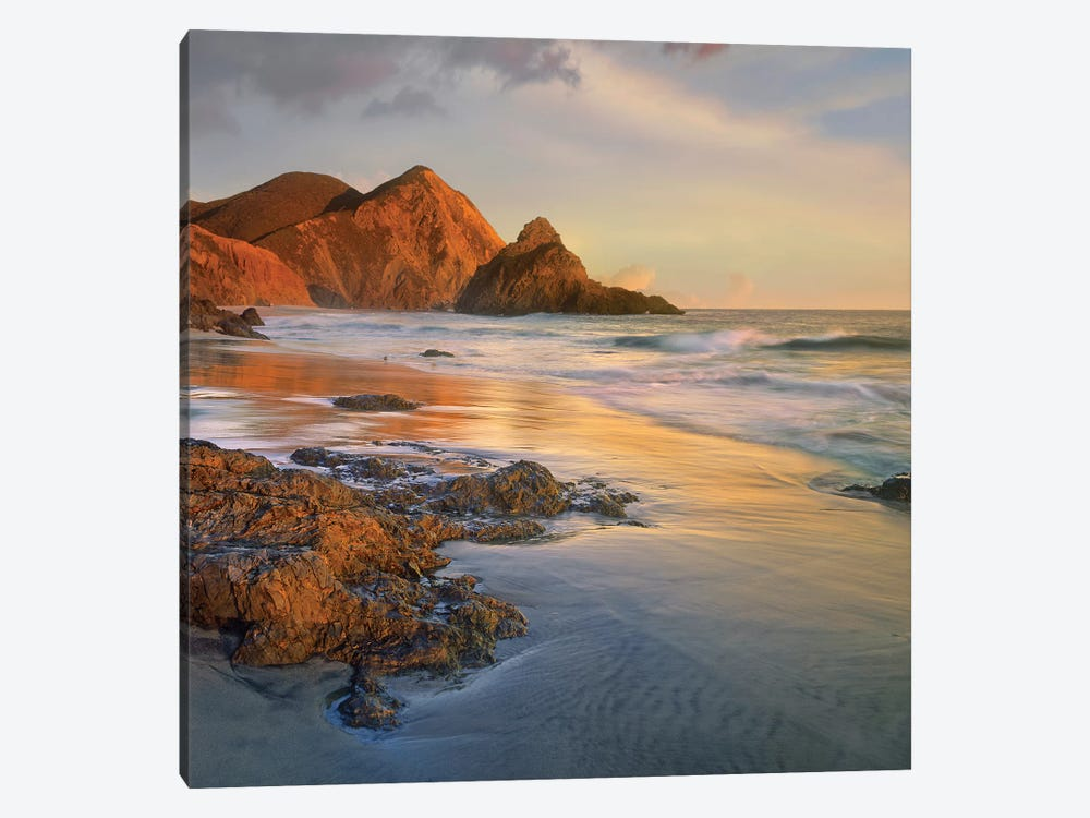 Bean Hollow Beach, Big Sur, California by Tim Fitzharris 1-piece Canvas Print