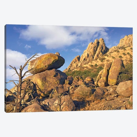 Rockpile, Davis Mountains, Chihuahuan Desert, Texas II Canvas Print #TFI900} by Tim Fitzharris Canvas Print