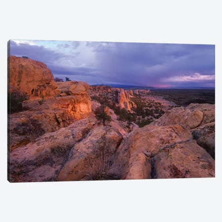 Rocky Outcroppings In El Malpais National Monument, New Mexico Canvas Print #TFI904} by Tim Fitzharris Canvas Art