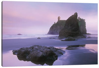 Ruby Beach With Seastacks And Boulders, Olympic National Park, Washington Canvas Art Print