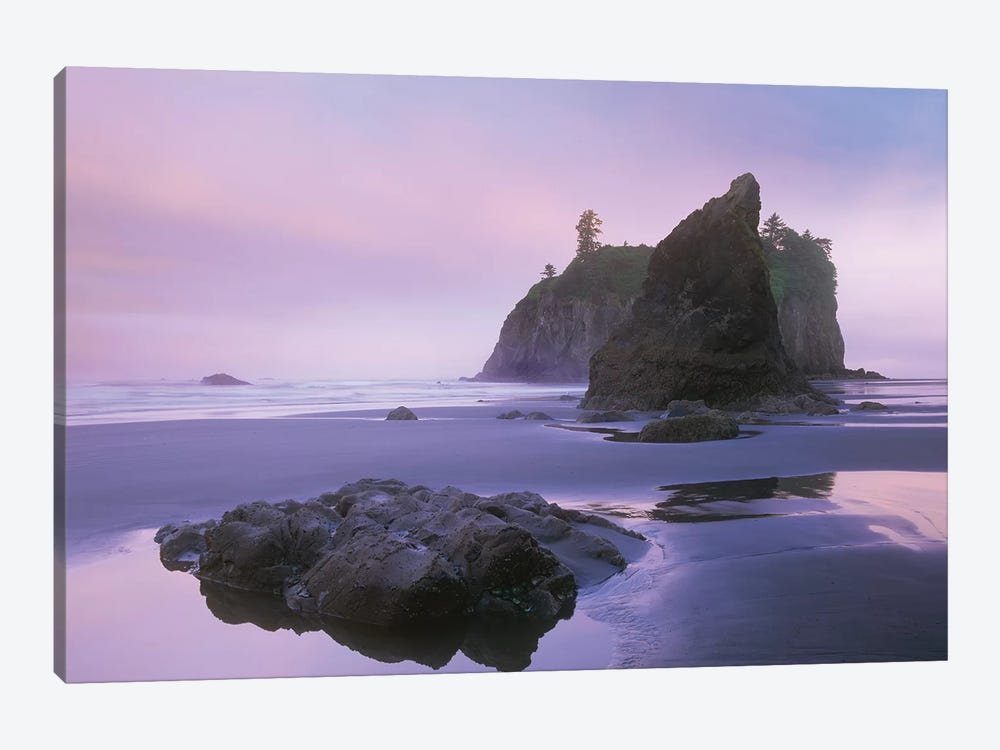 Ruby Beach With Seastacks And Boulders, Olympic National Park, Washington by Tim Fitzharris 1-piece Canvas Print