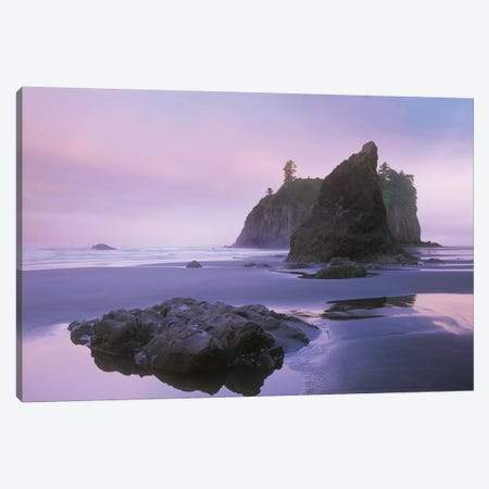Ruby Beach With Seastacks And Boulders, Olympic National Park, Washington Canvas Print #TFI910} by Tim Fitzharris Canvas Art