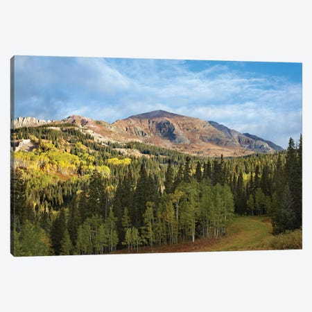Ruby Peak Near Crested Butte, Colorado Canvas Print #TFI911} by Tim Fitzharris Canvas Art