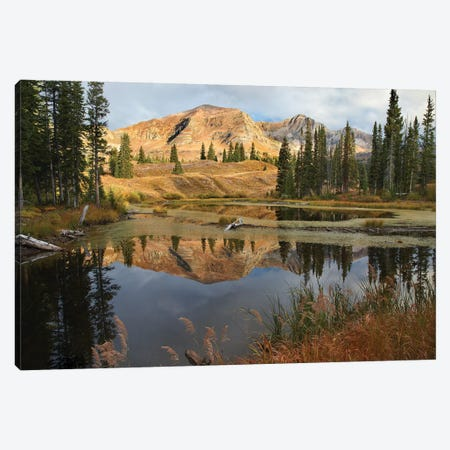 Ruby Range Reflected In Pond, Raggeds Wilderness, Colorado Canvas Print #TFI916} by Tim Fitzharris Art Print