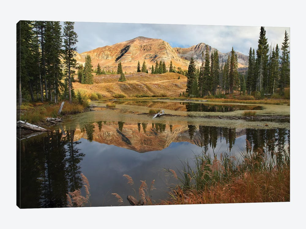 Ruby Range Reflected In Pond, Raggeds Wilderness, Colorado by Tim Fitzharris 1-piece Canvas Art Print