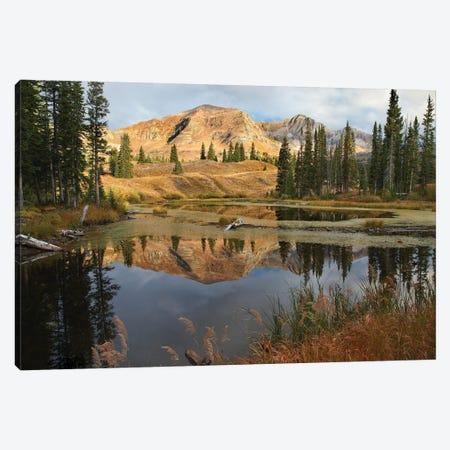 Ruby Range Reflected In Pond, Raggeds Wilderness, Colorado Canvas Print #TFI916} by Tim Fitzharris Art Print