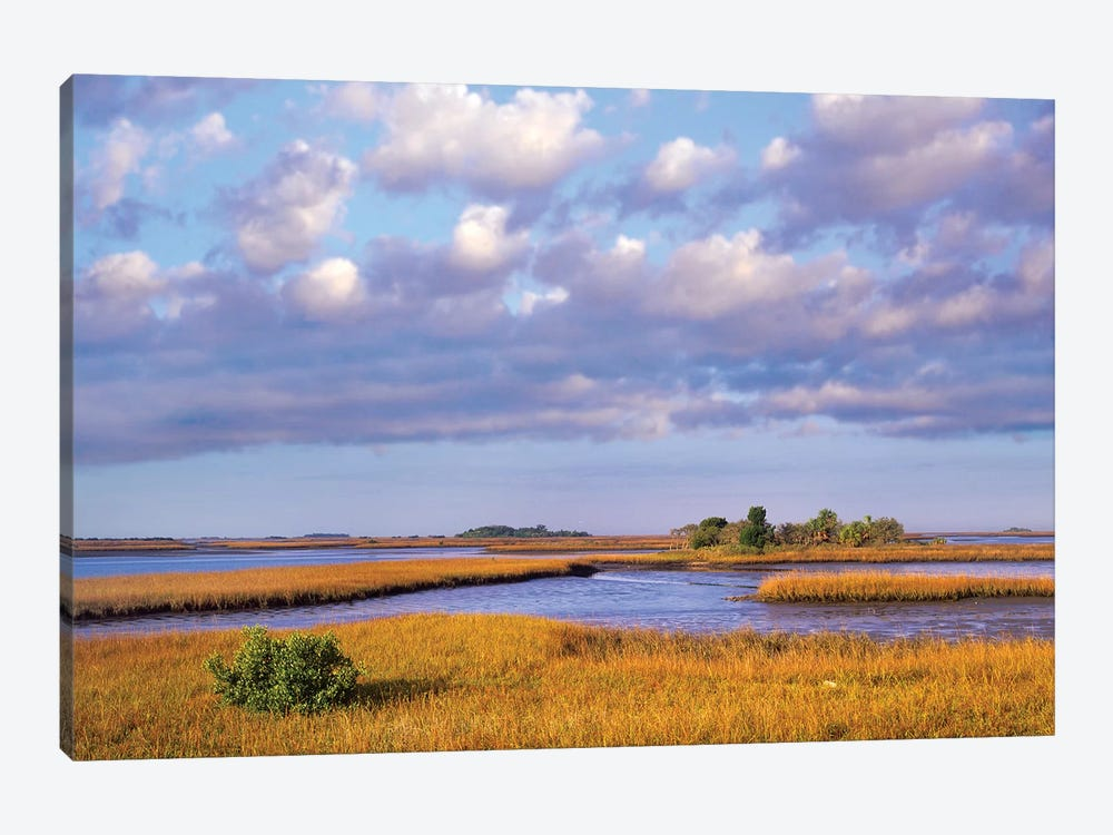 Saltwater Marshes At Cedar Key, Florida 1-piece Canvas Art Print
