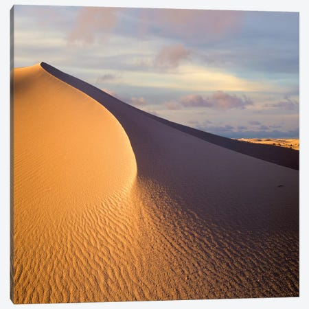 Sand Dune, White Sands National Monument, New Mexico Canvas Print #TFI952} by Tim Fitzharris Canvas Wall Art