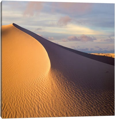 Sand Dune, White Sands National Monument, New Mexico Canvas Art Print