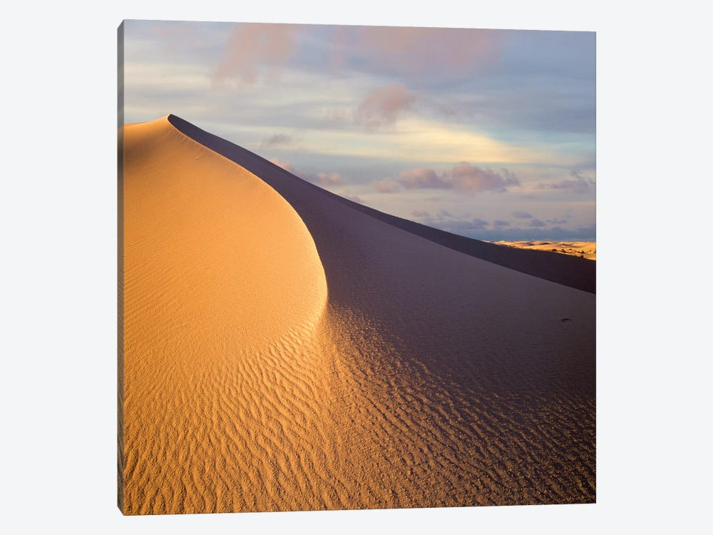 Sand Dune, White Sands National Monument, New Mexico by Tim Fitzharris 1-piece Canvas Print