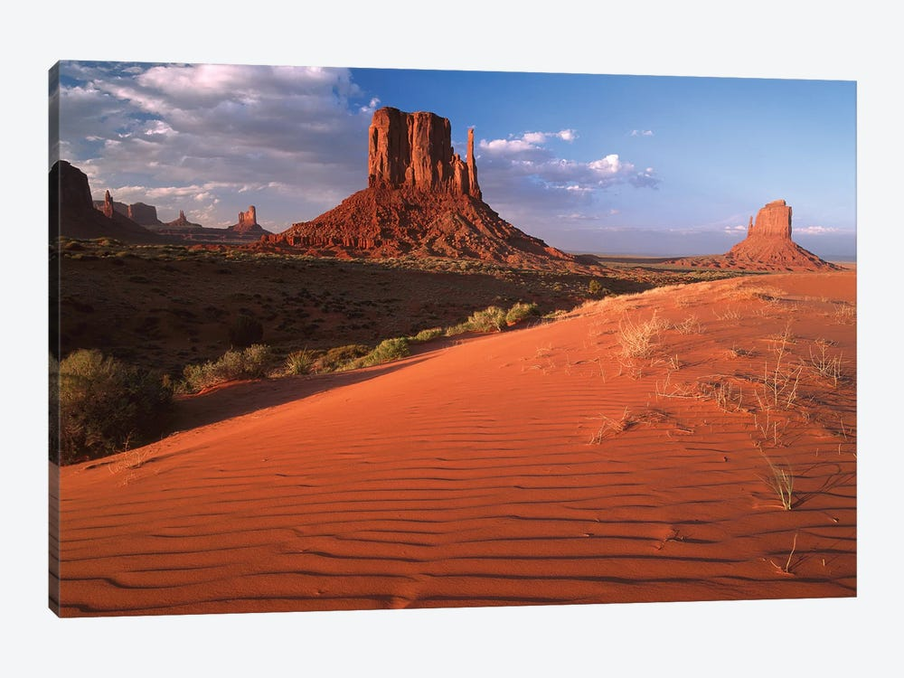 Sand Dunes And The Mittens, Monument Valley Navajo Tribal Park, Arizona by Tim Fitzharris 1-piece Canvas Art