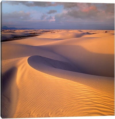 Sand Dunes, White Sands National Monument, New Mexico Canvas Art Print