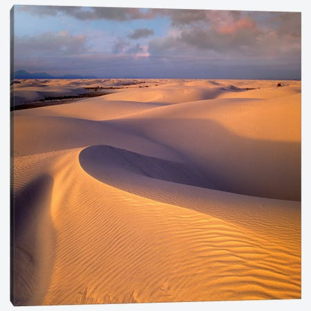 Sand Dunes, White Sands National Monument, New Mexico Canvas Print #TFI955} by Tim Fitzharris Canvas Print