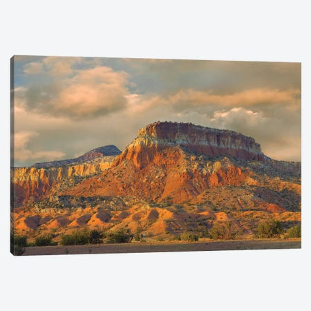 Sandstone Butte Showing Sedimentary Rock Layers, New Mexico Canvas Print #TFI962} by Tim Fitzharris Canvas Print