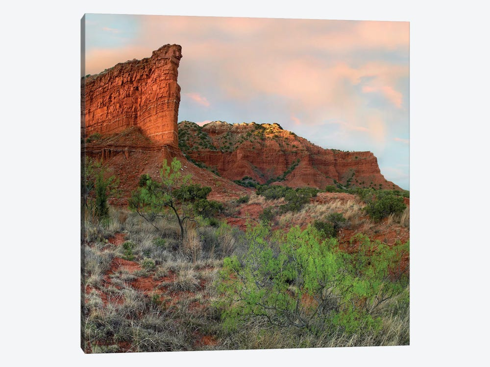 Sandstone Cliffs, Caprock Canyons State Park, Texas by Tim Fitzharris 1-piece Canvas Art