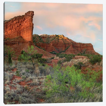 Sandstone Cliffs, Caprock Canyons State Park, Texas Canvas Print #TFI964} by Tim Fitzharris Canvas Artwork